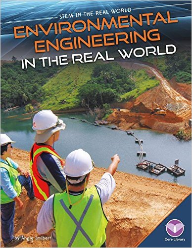 Book Cover: Environmental Engineering in the Real World
